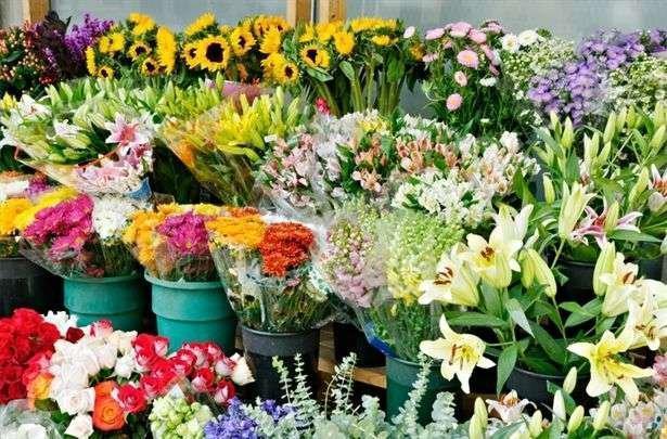 افزایش صادرات گل و گلاب و کاهش مشتری گل های زینتی